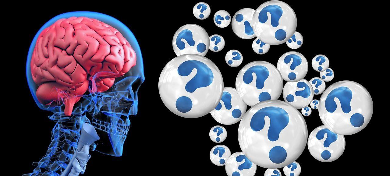 brain-2546101_1280-4-1280x578.jpg